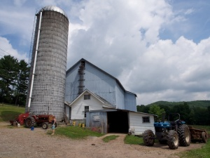 Small dairy farm, New York